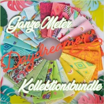 22er Stoffpaket - GANZE METER - Daydreamer Tula Pink Designerstoffe - Tropische FreeSpirit Patchworkstoffe - VORBESTELLUNG! ca. November 2021