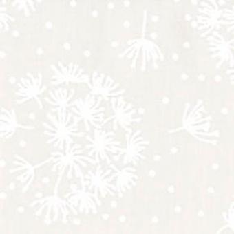 Weiße Pusteblumen auf Weiß