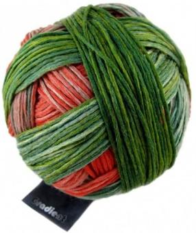 Gradient Farbverlaufsgarn - Schoppel Strickgarn Papagei #1701