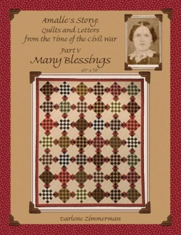Many Blessings - Amalie's Story: Quilts & Letters from the Time of the Civil War Part V - MÄNGELEXEMPLAR