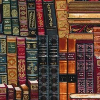 Bücherstoff - Antike & Vintage Buchrücken & Ledereinbände