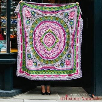 Scheepjes CAL 2020 d'Histoire Naturelle Crochet Along - Offizielle Colour Crafter Garnpackung Mineralogy