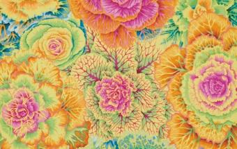 Yellow Brassica - Philip Jacobs - Kaffe Fassett Collective 2013