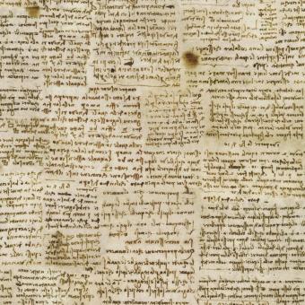 Antique Leonardo Da Vinci Script Schriftstoff - Patchworkstoff mit Skizzen des Meisters  - DIGITALDRUCK! Robert Kaufman Motivstoffe